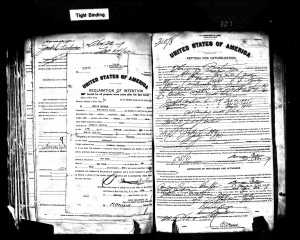 Herman Brotman Naturalization Application