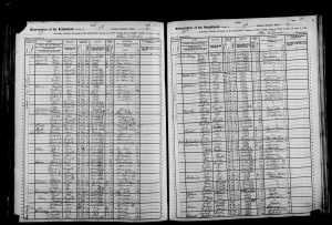 1905 NY census