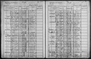 Gustave Rosenzweig family on the 1905 NYS census
