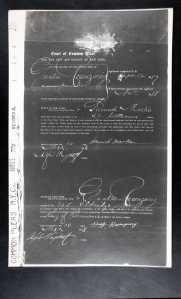 naturalization petition gustave rosenzweig