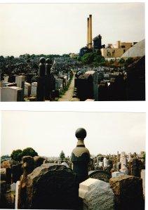 Mt Sinai cemetery