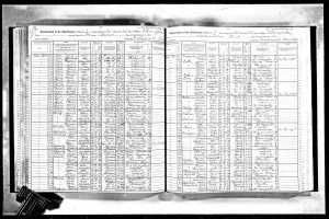 Celie and Nathan Mintz 1915 NYS census