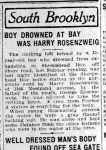 Brooklyn Standard Union July 8, 1913 page 6