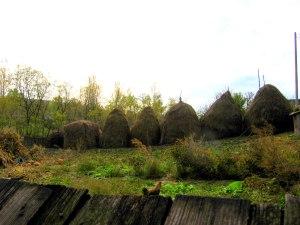 odd haystack, neighboring farm