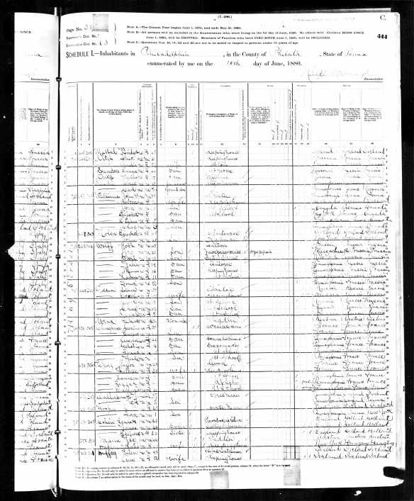 Lewis, Elizabeth and Jonas Cohen 1880 US census