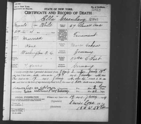 Ella Cohen Greenberg death certificate 1904