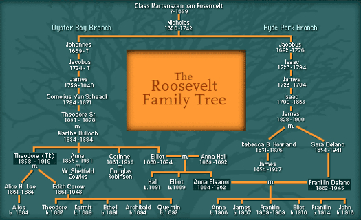 Family Tree showing how FDR and Teddy Roosevelt were fifth cousins  http://www-tc.pbs.org/wgbh/americanexperience/media/uploads/special_features/captioned_image/eleanor_tree.jpg