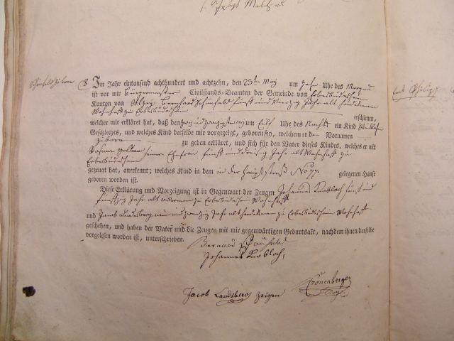 Birtn record of Zibora Schoenfeld 1818