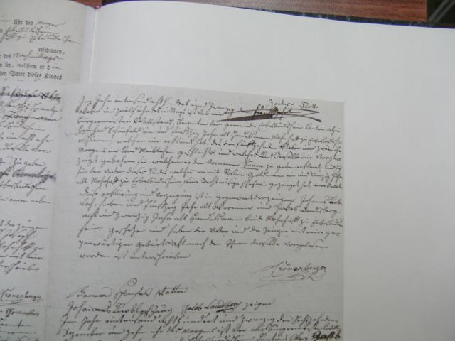 Birth Record of Saara Schoenfeld 1820