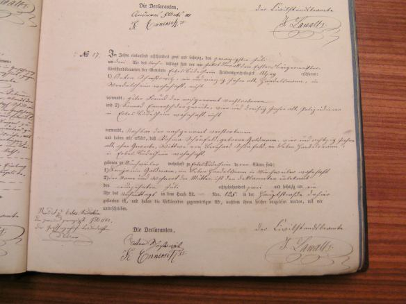 Death record of Rosina Goldmann Schoenfeld 1862