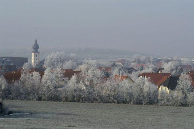 Author: Elisabeth Dauscher Location: 55234 Erbes-Büdesheim, Rhineland-Palatinate http://commons.wikimedia.org/wiki/File:Erbes_Buedesheim_Rheinhessen_ed.JPG
