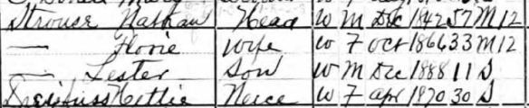 Flora and Nathan Strouse 1900 census