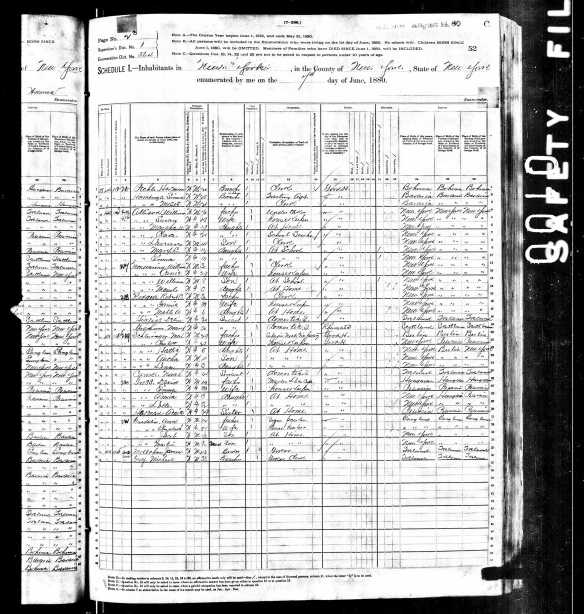 Max Schlesinger and Charlotte Seligman 1880 US census