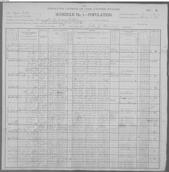 Max Schlesinger and Charlotte Seligman 1900 census