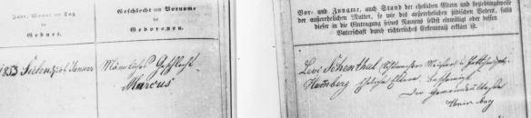 Marcus Schoenthal birth record January 26, 1853