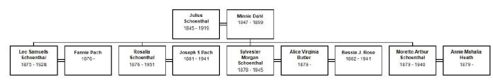 Julius SChoenthal new tree