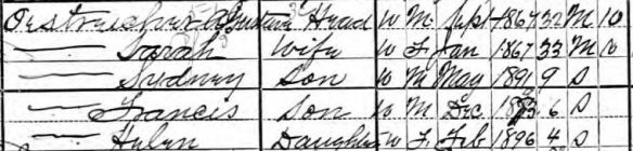 Oestreicher family 1900 census Year: 1900; Census Place: Pittsburgh Ward 21, Allegheny, Pennsylvania; Roll: 1362; Page: 10A; Enumeration District: 0254; FHL microfilm: 1241362