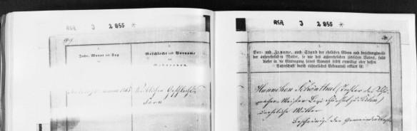 Sara Schoenthal birth record HHStAW Abt. 365 Nr. 772, S. 12