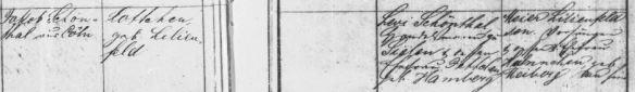 Marriage record of Jakob Schoenthal and Charlotte Lilienfeld Hessisches Hauptstaatsarchiv, Wiesbaden: Trauregister der Juden von Gudensberg 1825-1900 (HHStAW Abt. 365 Nr. 386) 1825-1900