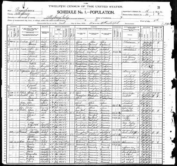 Amalia Baer 1900 census p 1