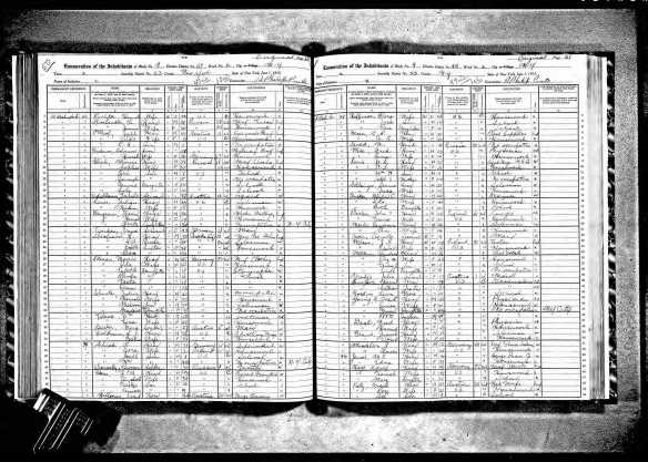 Jerome and Elsie Baer Grant and family 1915 NYS census New York State Archives; Albany, New York; State Population Census Schedules, 1915; Election District: 49; Assembly District: 23; City: New York; County: New York; Page: 60