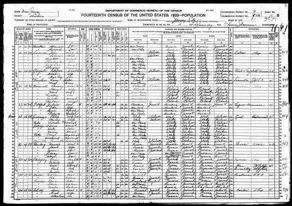 Julius Goldfarb and family 1920 US census lines 70-73 Year: 1920; Census Place: Jersey City Ward 3, Hudson, New Jersey; Roll: T625_1043; Page: 17B; Enumeration District: 135; Image: 1104