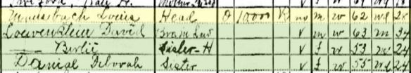 Mansbach siblings on 1930 census Norfolk, VA Year: 1930; Census Place: Norfolk, Norfolk (Independent City), Virginia; Roll: 2470; Page: 4B; Enumeration District: 0050; Image: 888.0; FHL microfilm: 2342204