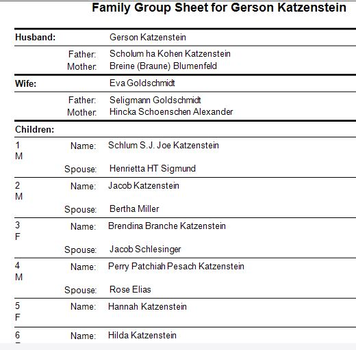 family-group-sheet-for-gerson-katzenstein