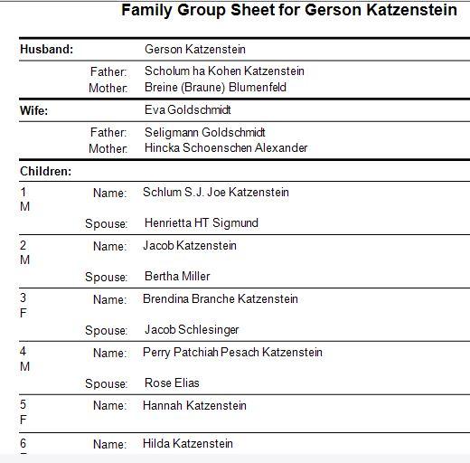 family-group-sheet-for-gerson-katzenstein