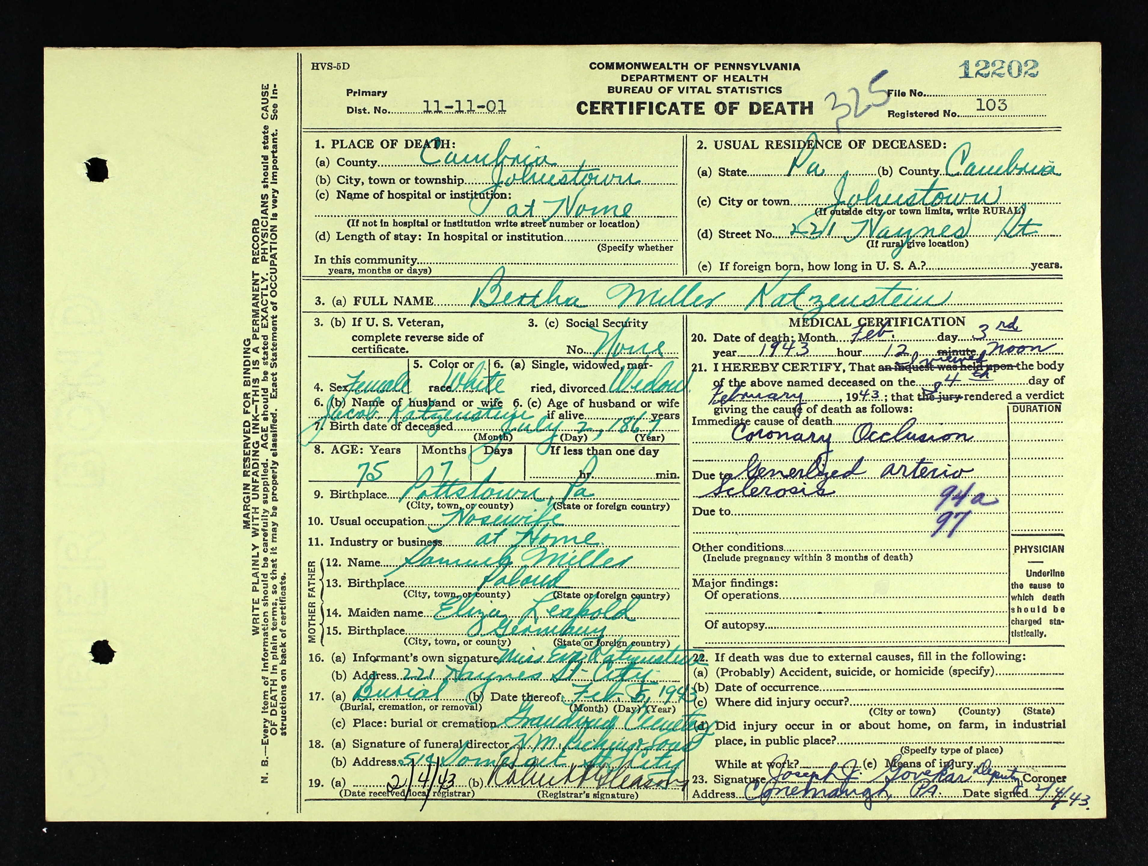 Lovely photos of birth certificate in philadelphia business johnstown from birth certificate in philadelphia image source brotmanblog aiddatafo Gallery